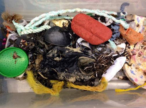 An outreach beach box full of marine debris.