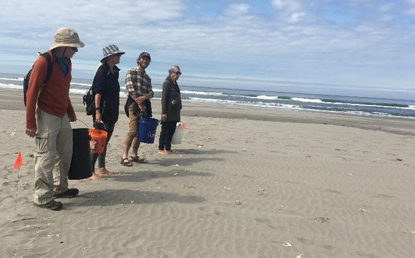 Four volunteers on a beach participating in a cleanup.