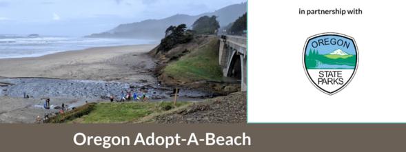 The Adopt-a-Beach website image.