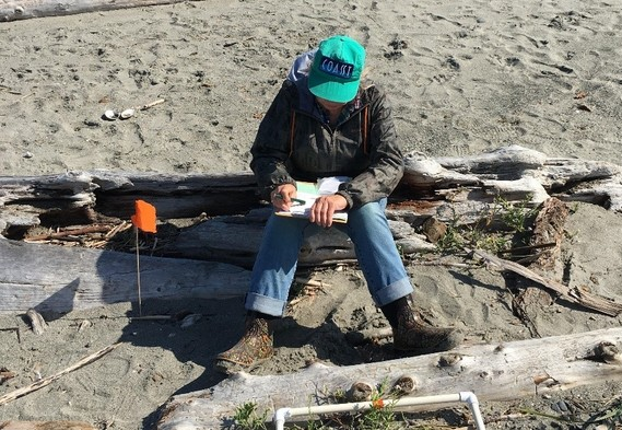 Volunteer records marine debris data at Point No Point Beach.