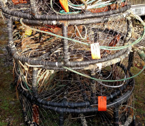 A stack of recovered derelict crab pots.