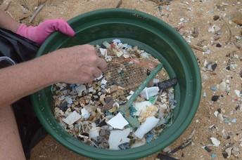 Microplastics sieved from Kauai beaches.