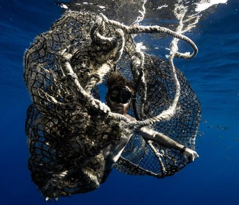 A swimmer simulating a marine mammal entanglement in a ghost fishing net.