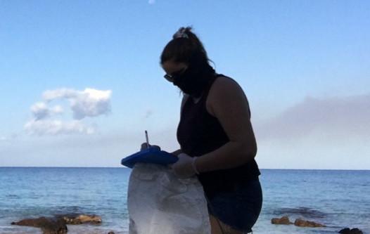 A volunteer tallies up collected marine debris on a beach.
