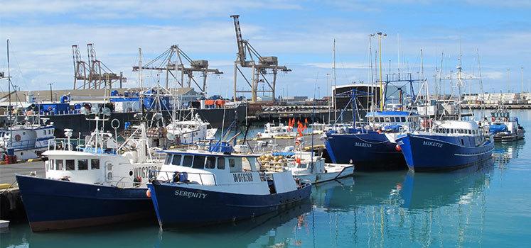 Longline fishing vessels in Honolulu, Hawaii.