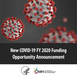 COVID-19 FY 2020 Funding Opportunity Announcement. HHS OMH.