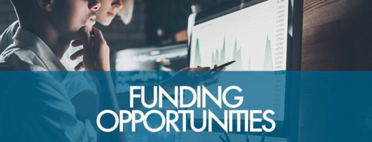Stock image of personal looking at computer screen, with the words funding opportunities
