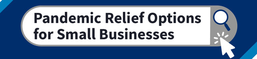 webinar: pandemic relief options for small businesses