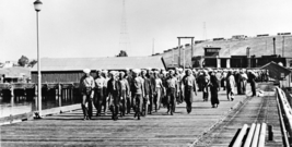 Veteran Legacy Program