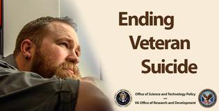 Ending Veteran Suicide RFI
