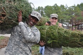 Service members unloading Christmas trees