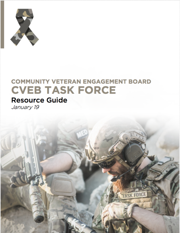 CVEB Task Force