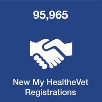 My HealtheVet usage data
