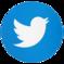 Twitter icon button