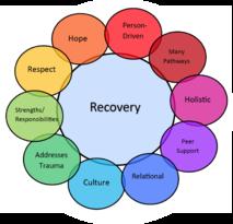 SAMHSA Recovery Wheel