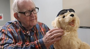 Elderly man, petting a puppy