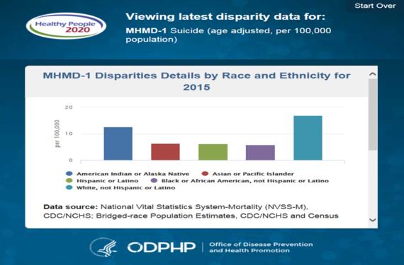 HHS Disparities Widget