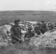 Illinois and Australian soldiers at Hamel
