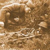 Skeleton on battlefield