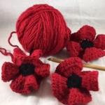 Westford poppies
