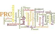 PRC Wordle