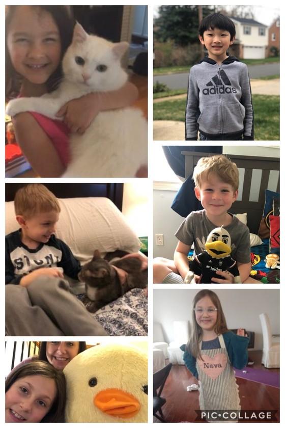 spirit day collage
