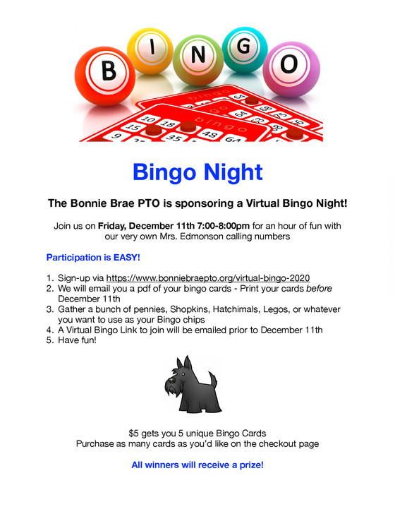 PTO Bingo flyer