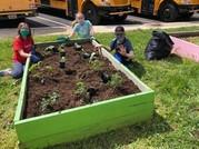 Dranesville ES gardening