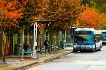 Community Transit bus at Lynnwood Transit Center with Fall leaves in the background.