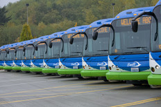 Line-up of Swift buses