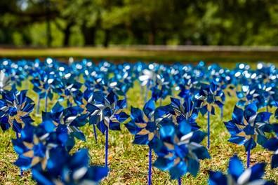 CAP Month Pinwheels