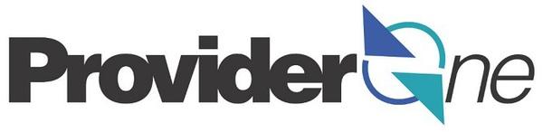 ProviderOne Logo