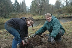 Swamp creek tree planting