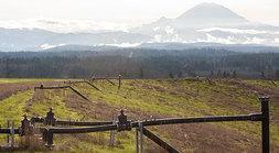Landfill with Mt. Rainier