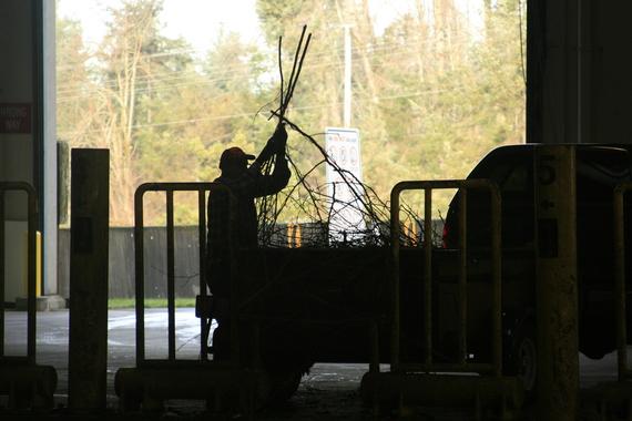 Yard waste silhouette