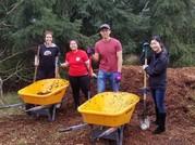 group mulching