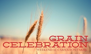 grain celebration