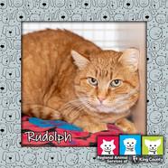 Rudoph