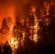 Wildfire at night