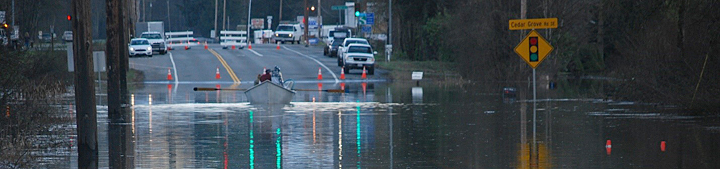 Boating on a flooded road