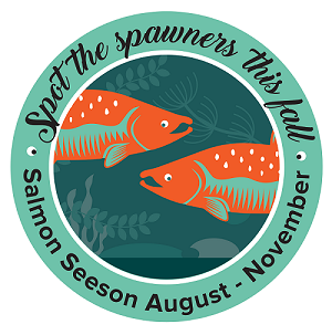 Salmon SEEson Logo
