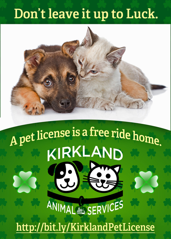 March pet licensing ad