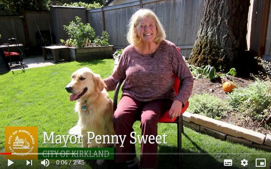 Mayor Penny Sweet with Golden Retriever Tanin