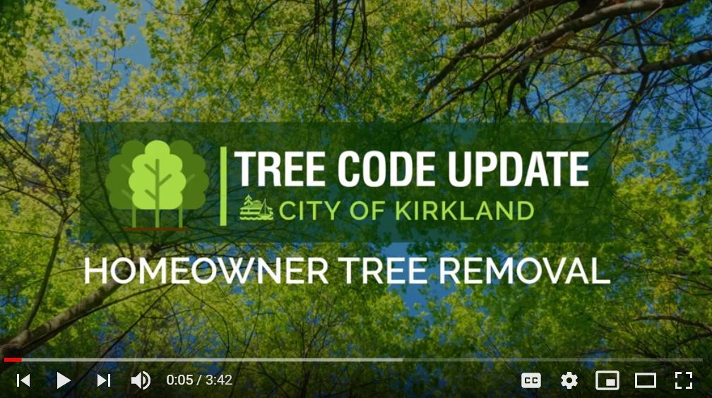 homeowner tree removal video part two cover