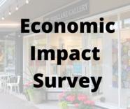 Economic impact survey