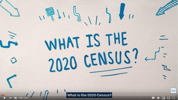 Census video image