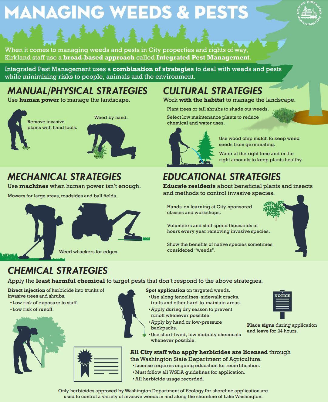 Vegetation management image