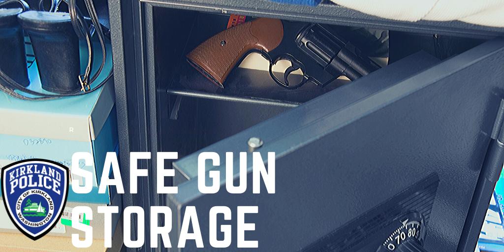 Safe Gun Storage image