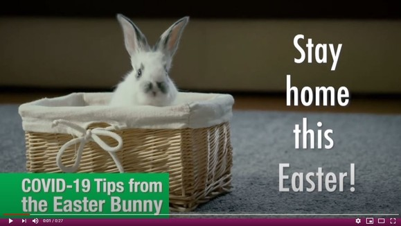 COVID-19 Tips from the Easter Bunny
