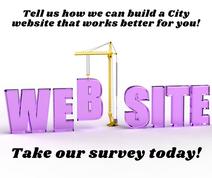 Web site survey image